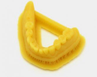 Rasina LCD/DLP 3DM Dental Model